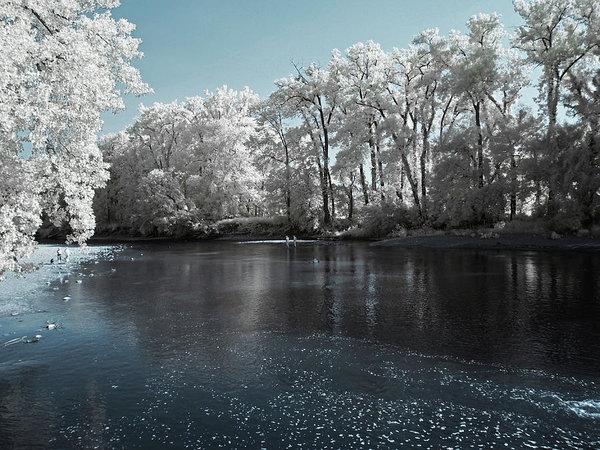 Bob LaForce - Chagrin River/Daniels Par... Print