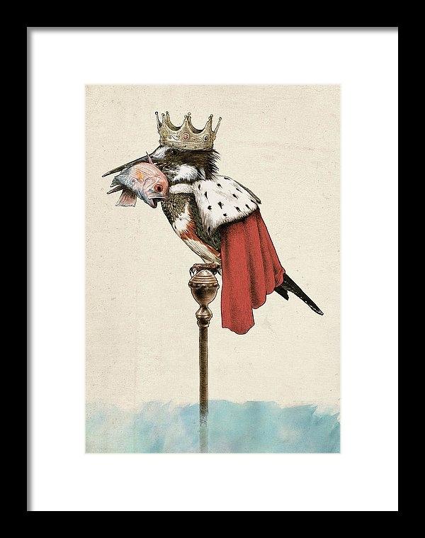 Eric Fan - Kingfisher Print