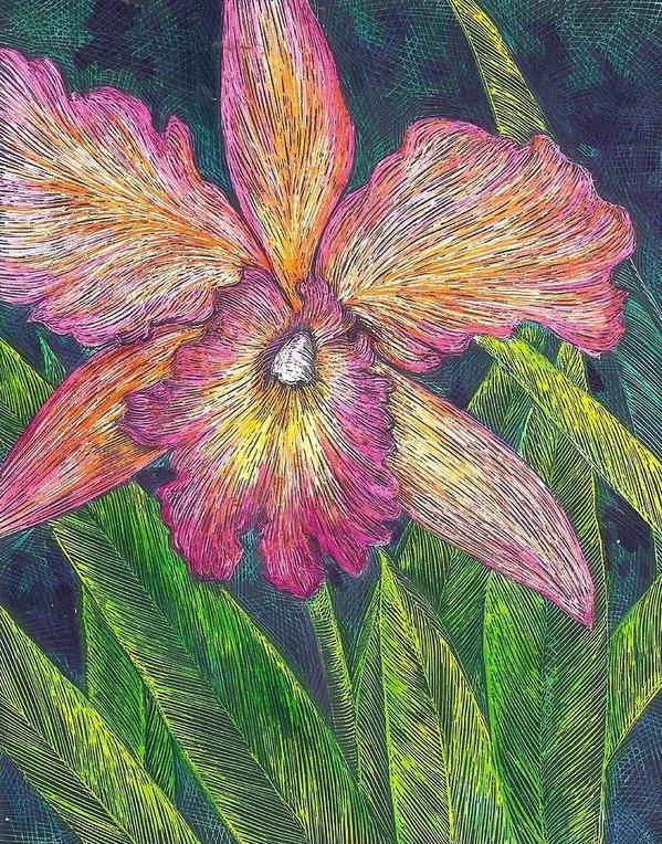 Cynthia Conklin - Orchid 2 Print