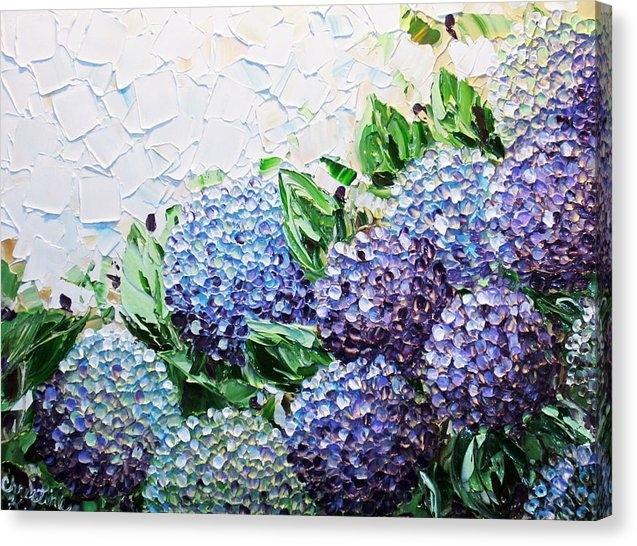 Christine Krainock - Hydrangea at Daybreak Print