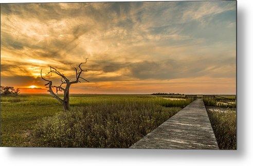 Donnie Whitaker - Lone Cedar Dock Sunset - ... Print