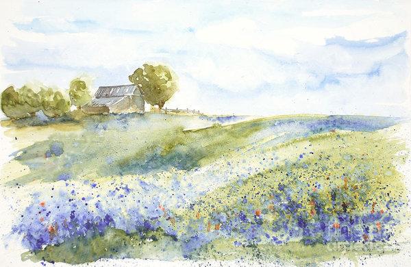 Sandra Strohschein - Texas Bluebonnets Print