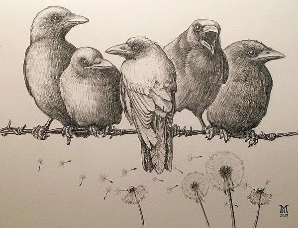 Mark Hansen - Five Crows Print