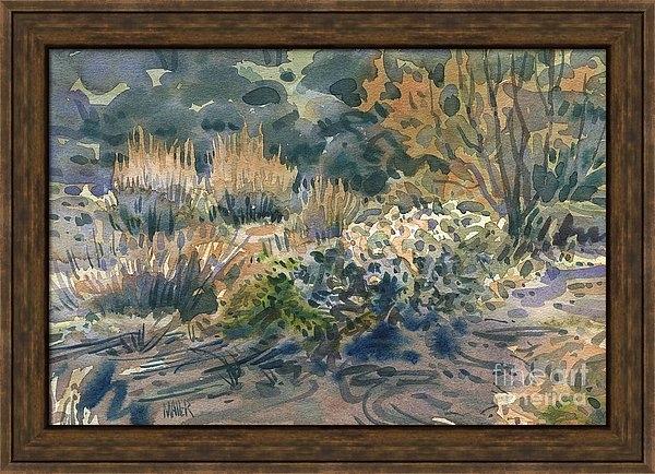 Donald Maier - High Desert Flora Print