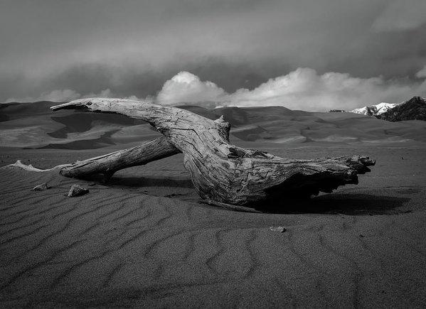 Michael Osborne - Sands of Time Print