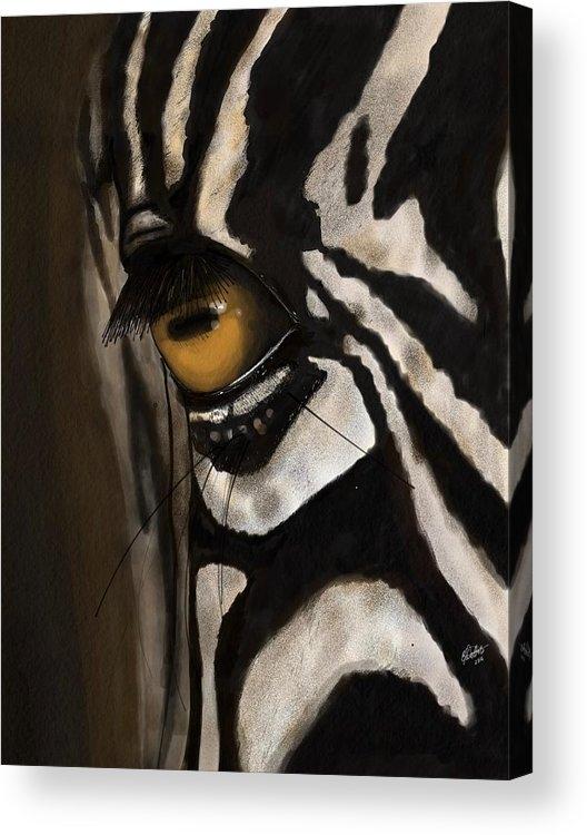 Gloria Dattolo - Zebra