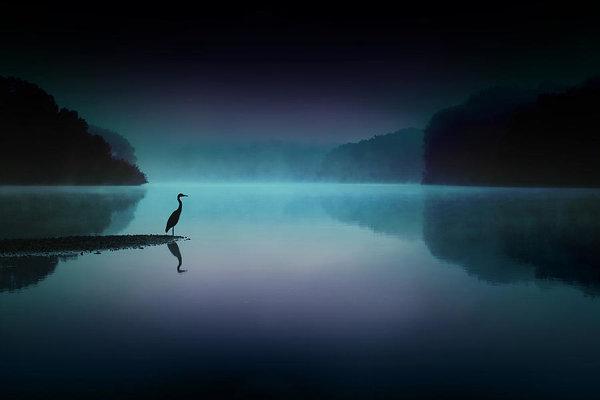 Rob Blair - Silent Night Print
