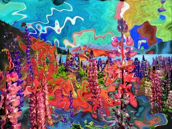 James Ricca - Flower Zones Print