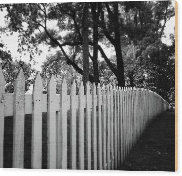 Linda Woods - White Picket Fence- by Li... Print