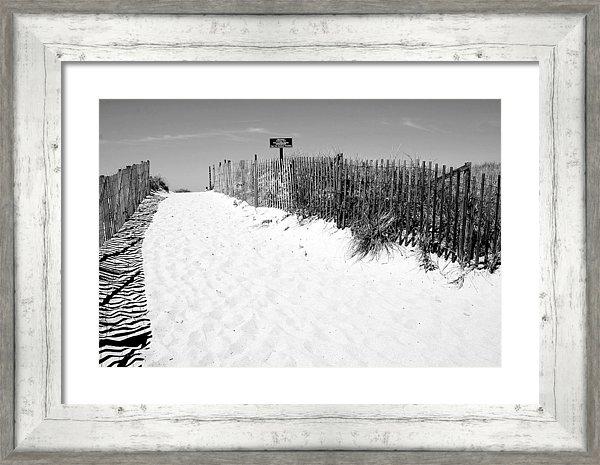 Caroline Stella - Provincetown Dunes on Cap... Print