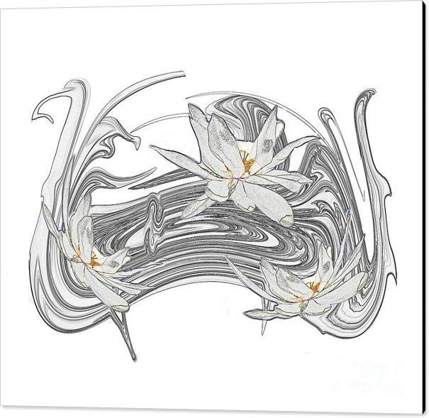 TN Fairey - Colorless Waterlily Print
