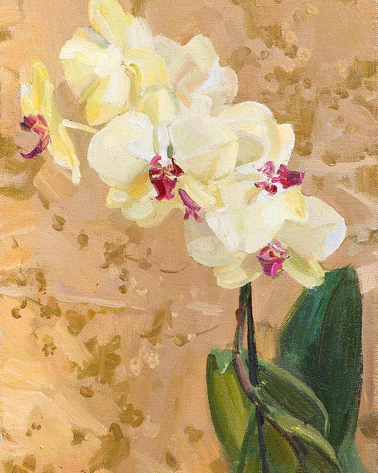 Victoria Kharchenko - Yellow orchid Print