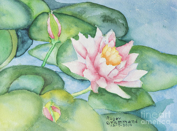 Roger Grammond - Water Lilies Print