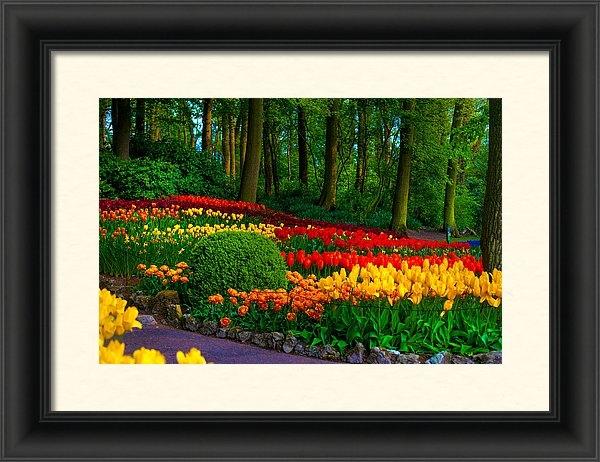 Jenny Rainbow - Colorful Corner of the Ke... Print