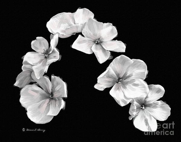 Diane E Berry - Petal Cascade Custom Print