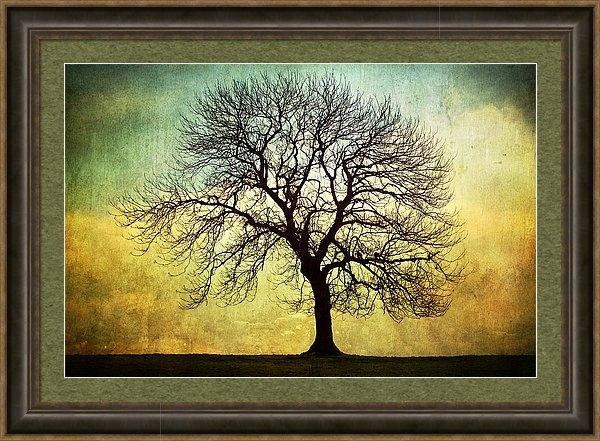 Natalie Kinnear - Digital Art Tree Silhouet... Print
