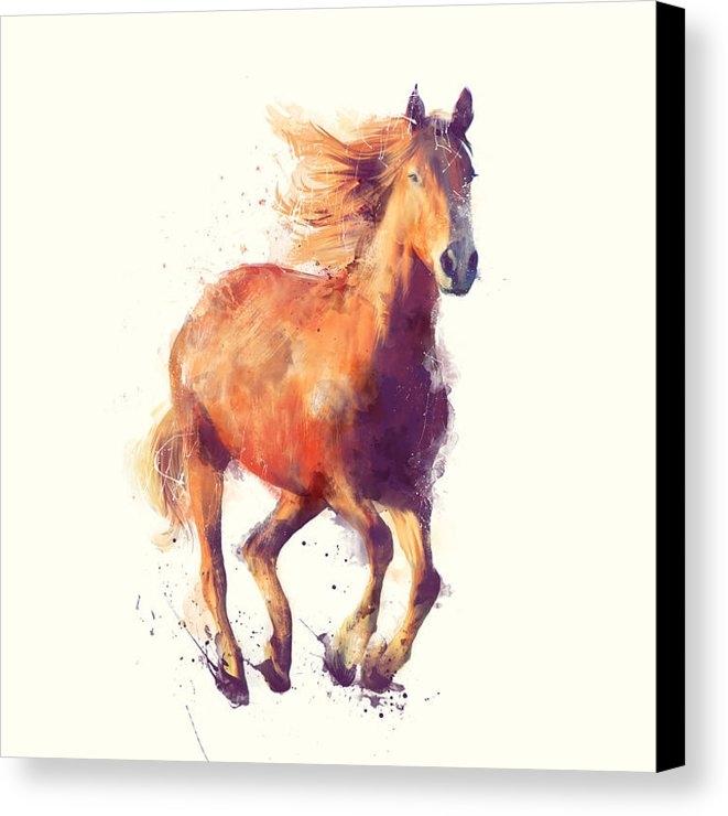 Amy Hamilton - Horse // Boundless Print