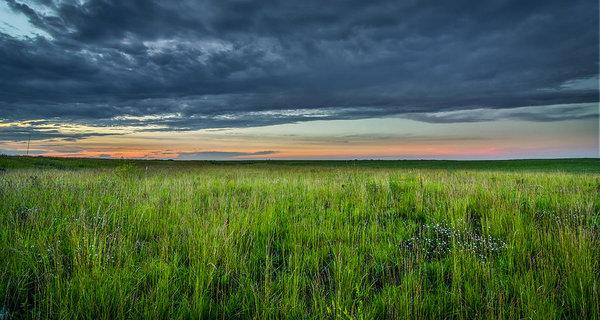 Amel Dizdarevic - Iowa Landscape  Print