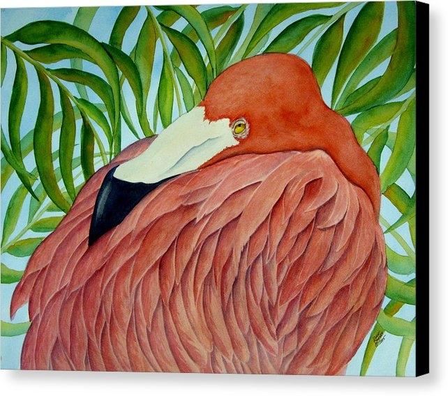 Dave Combs - Resting Flamingo Print