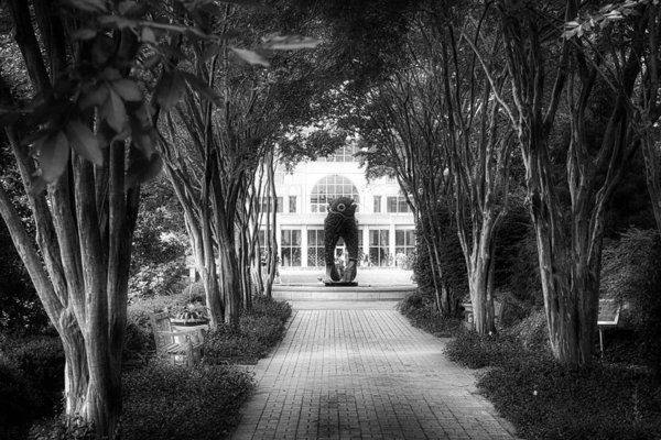 Douglas Barnard - Atlanta Botanical Garden-... Print