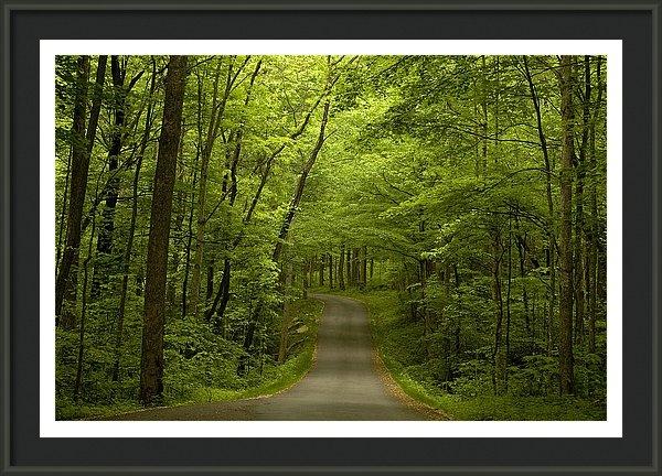 Andrew Soundarajan - The Road Less Travelled Print