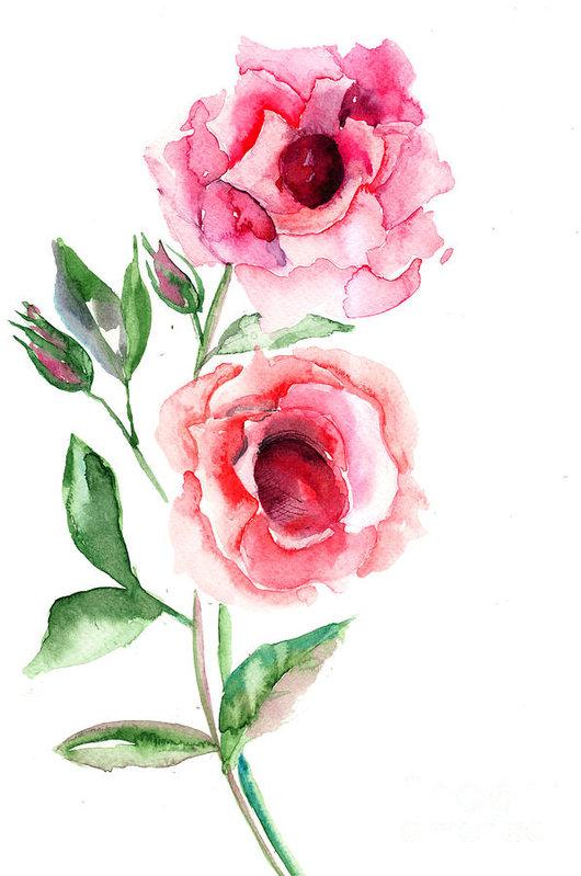 Regina Jershova - Beautiful Roses flowers Print