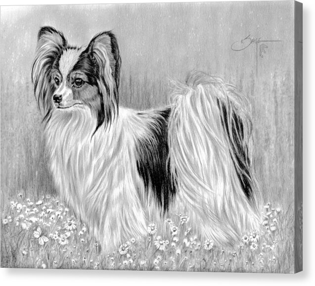 Elizabeth Sage - Papillon-Jenny Print