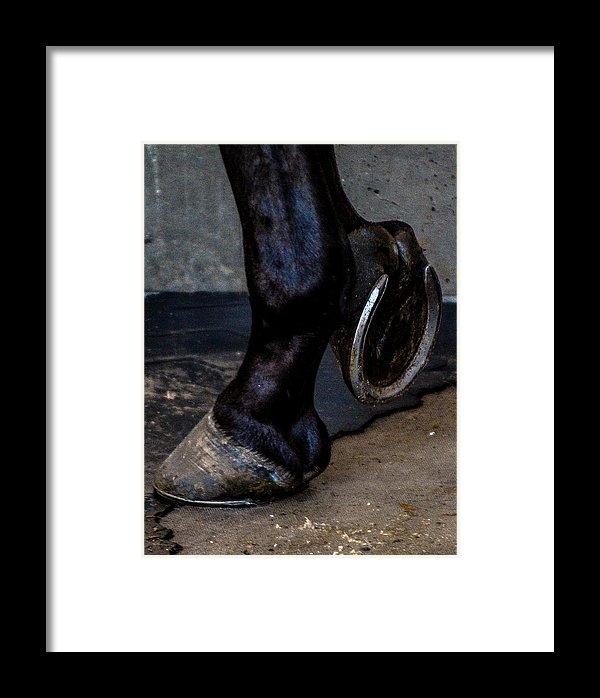 Pamela Schreckengost - New Shoes Print