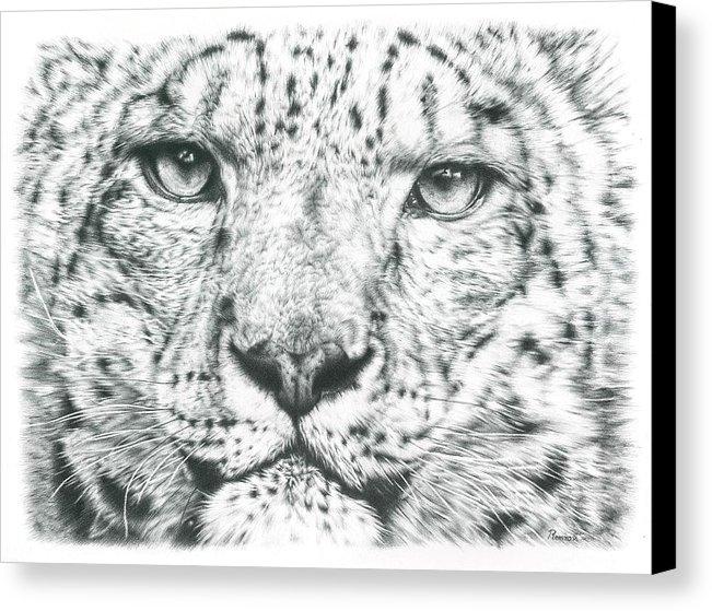 Remrov - Snow Leopard  Print