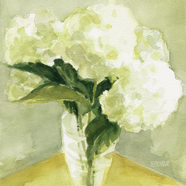 Beverly Brown - White Hydrangeas Morning ... Print