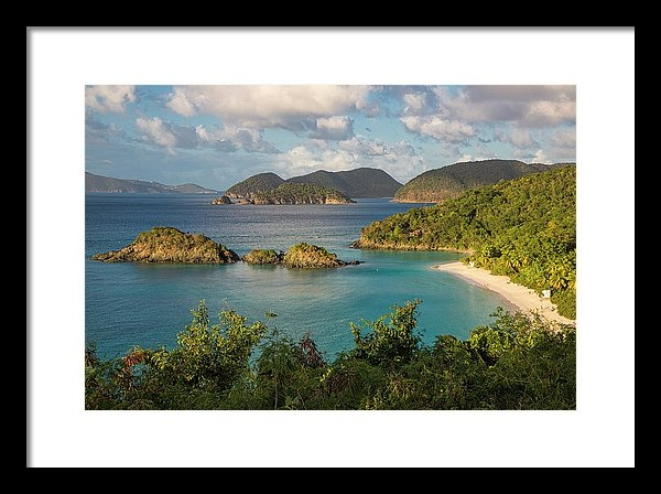 Adam Romanowicz - Trunk Bay Morning Print