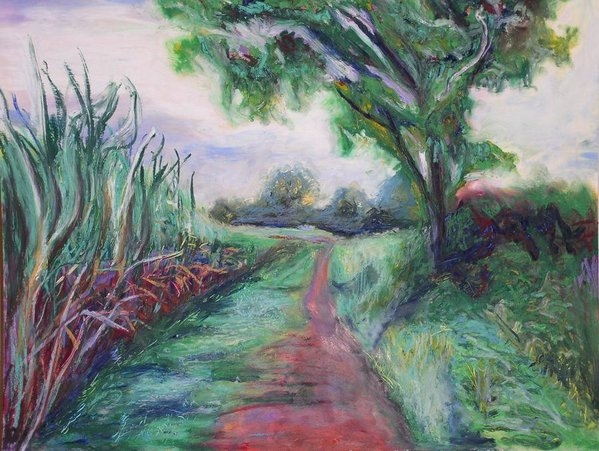 Kennedy Paizs - Sugar cane field Print