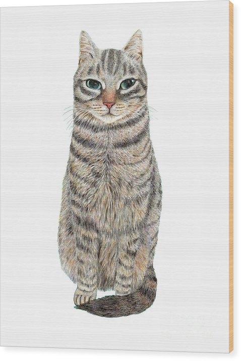 Jingfen Hwu - A Cool Tabby Print