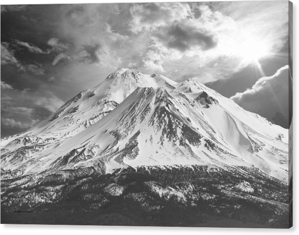 Athala Carole Bruckner - Shasta Print