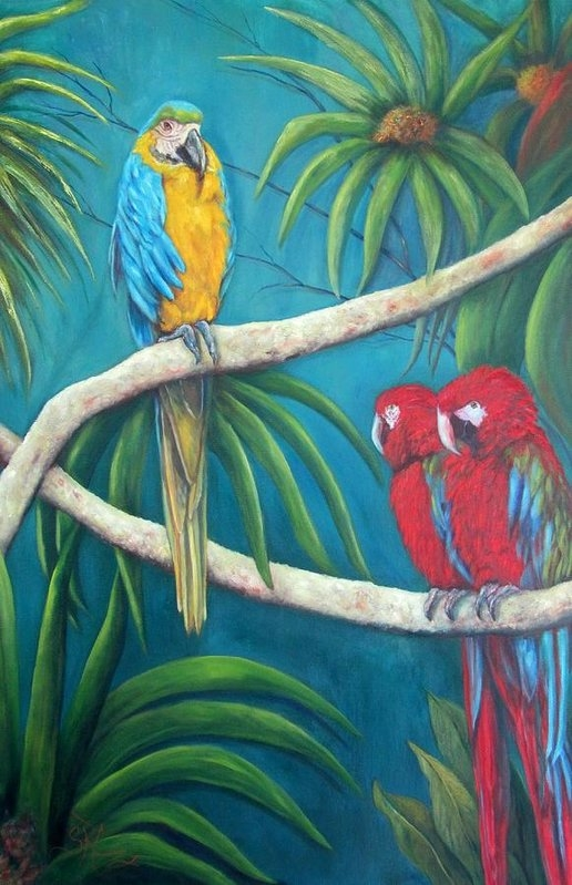 Sandra Cutrer - Three is a Crowd,macaws Print
