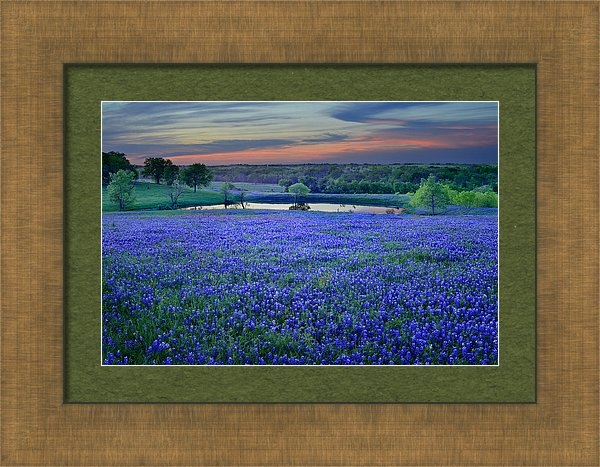 Jon Holiday - Bluebonnet Lake Vista Tex... Print
