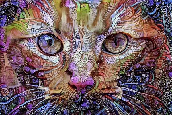 Peggy Collins - Colorful Cat Art Print
