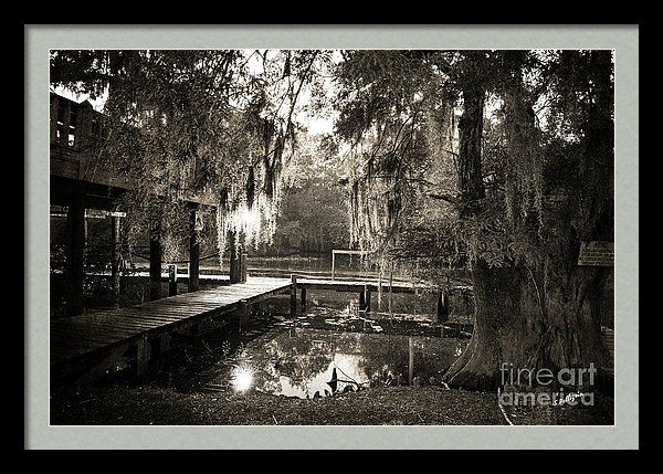 Scott Pellegrin - Bayou Evening Print