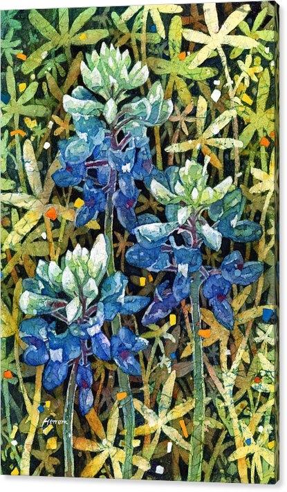 Hailey E Herrera - Garden Jewels II Print