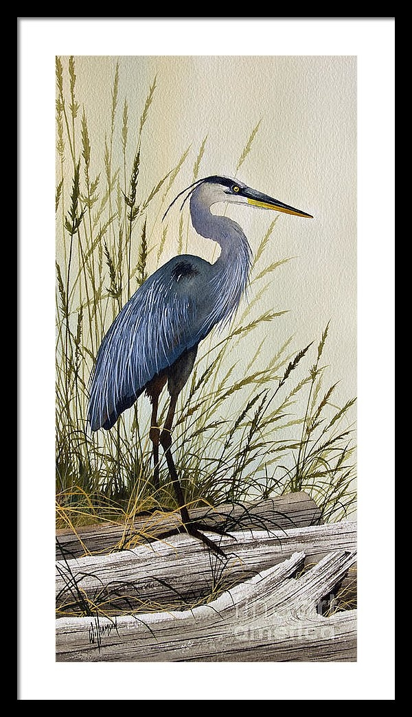James Williamson - Great Blue Heron Splendor Print
