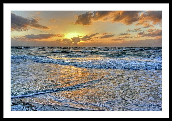 HH Photography of Florida - Restless Print