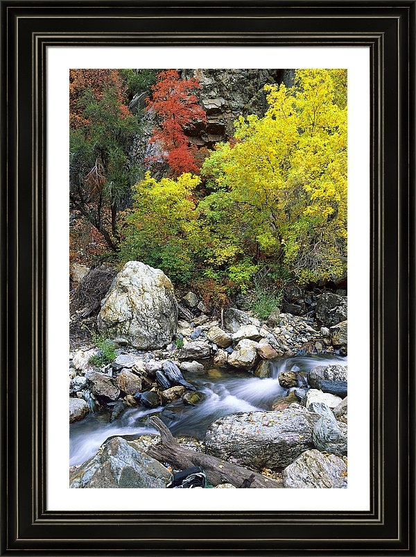 Howie Garber - Fall Foliage in Big Cotto... Print