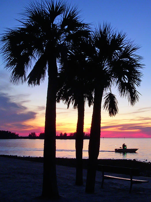 Aimee L Maher Photography and Art Visit ALMGallerydotcom -  Beach Sunset