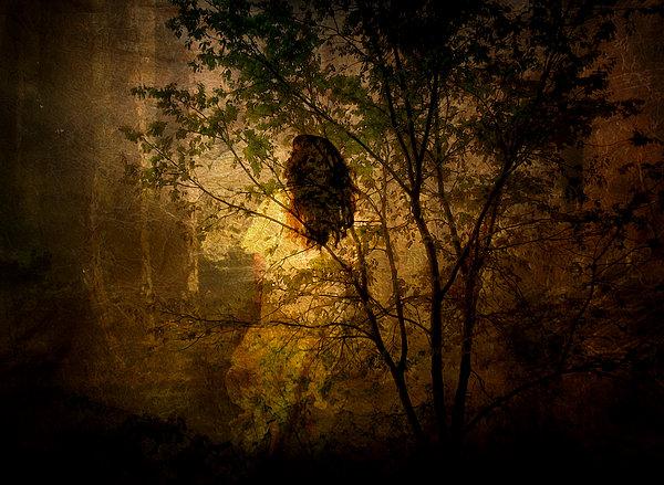 Julie Palencia - Lost
