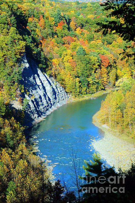 Kathleen Struckle - River Gorge