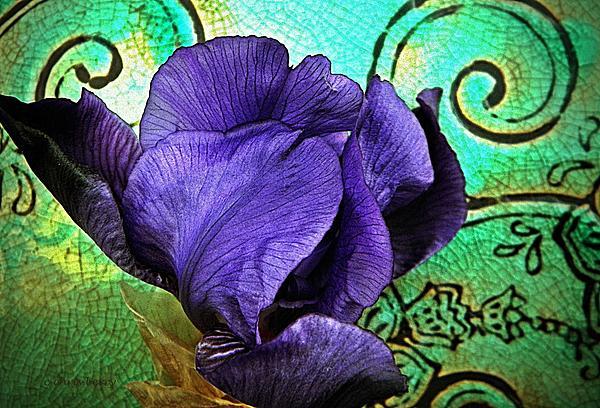 Chris Berry - Purple Perfume