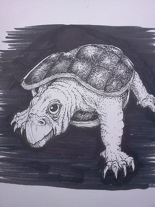 Richie Montgomery - A Turtle Named Puppy