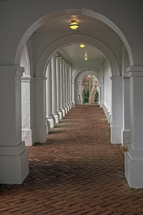 Jerry Gammon - Arches at the Rotunda at University of VA