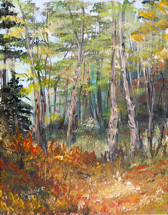 Dorothy Maier - Autumn in the Forest