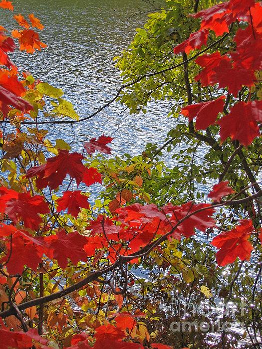 Ann Horn - Autumn Lake